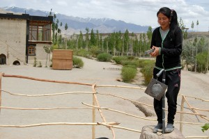The Secretary and Coordinator, here Tsetan, ring the Bell to indicate the Times