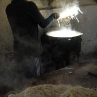 Benoi, our Cook