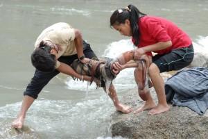 Washing Picnic