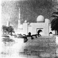 Mosque at Abu Dhabi