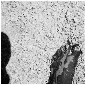 Soil at Tso-Kar
