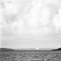 Blick aus der Carrigahold Bay